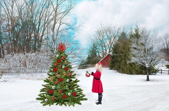 Сколько метров самая большая новогодняя елка?